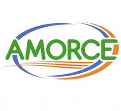 Congre_amorce