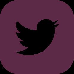 Twitter Seban & Associés
